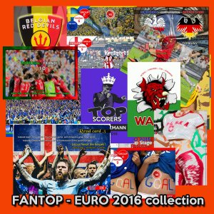 EURO 2016 - FANTOP cards collections
